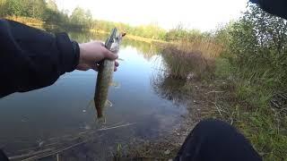 Время Рыбаков Рыбалка с берега