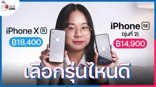 [iMoD] iPhone SE (รุ่นที่ 2) กับ iPhone XR เลือกรุ่นไหนดี ปี 2021