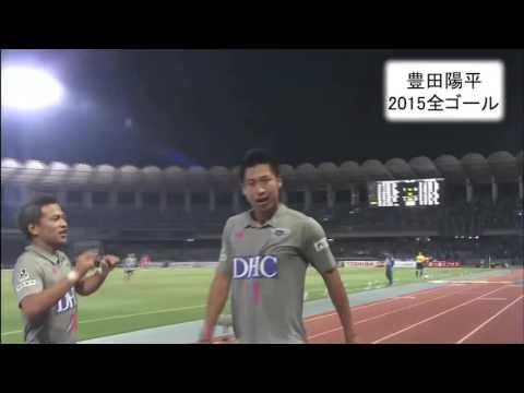 豊田陽平2015全ゴール
