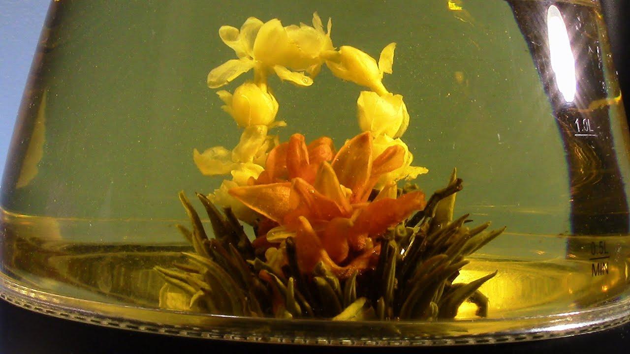 Flowering Tea Lily Basket Youtube