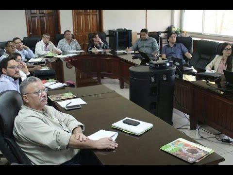 Honduras impulsa cultivos biofortificados para mejorar la nutrición de la población