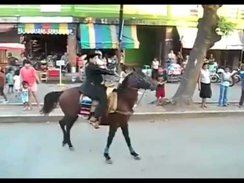 The Real Flying Horse - YouTube