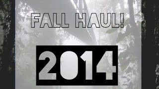 Fall/Birthday Haul: Forever21,PINK, AA & more! Thumbnail