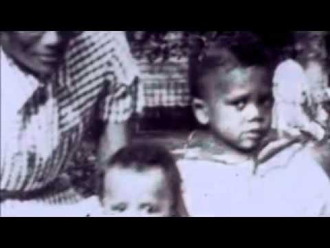 African American Lives 1