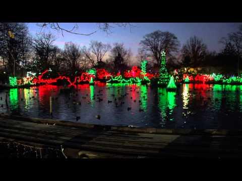 Wild Light Show 2013 - Cincinnati Zoo