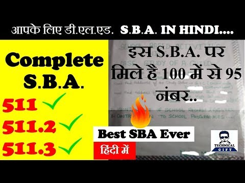 (डी.एल.एड.) Complete SBA File | Complete Solution | Technical Gift