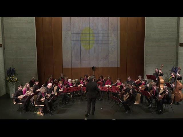 D. Schostakowitsch - Valzer no. 2 - Orchestra mandolinisti di Lugano
