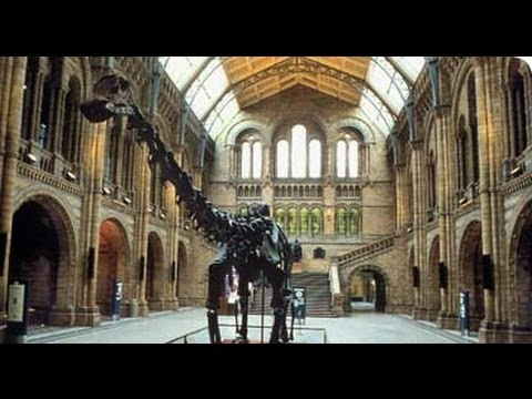 Jurassic Collectables visits The Natural History Museum, London