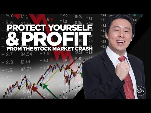 Protect Yourself & Profit from the Coming Stock Market Crash