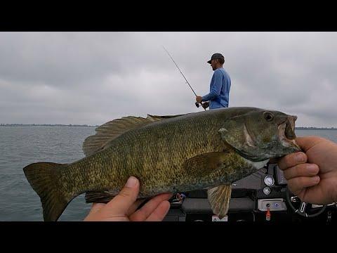 Summertime, Smallmouth Bass, & Lake St Clair (1080p HD)
