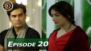 Dil Lagi Episode 20 - ARY Digital - Top Pakistani Dramas
