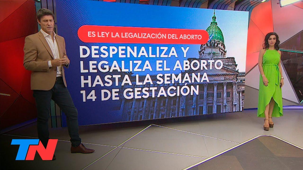 ABORTO LEGAL EN LA ARGENTINA: QUÉ DICE LA LEY QUE SE APROBÓ EN EL SENADO