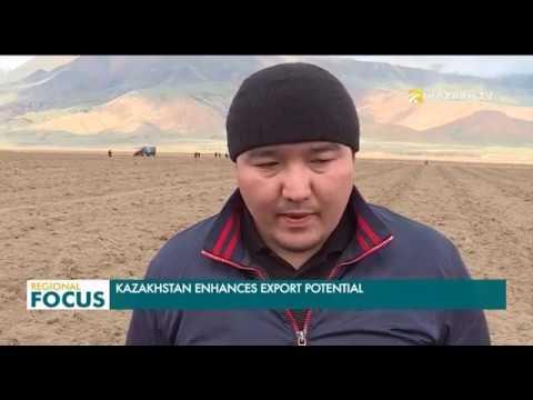 Казакстан Кытайга товар экспорттойт