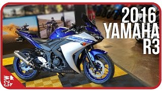 2016 Yamaha R3 | First Ride