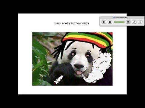 Thug Panda Youtube