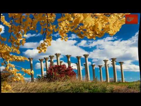 Travel to United States: Autumn in Washington DC,USA