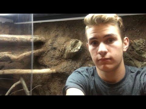 Huge Iguana Cage!!! I Can Go Inside!!! DIY