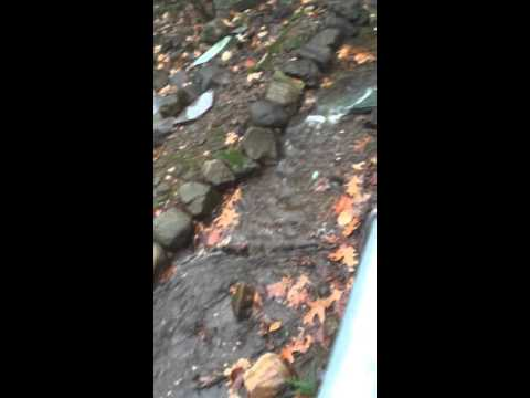 Pool house drain