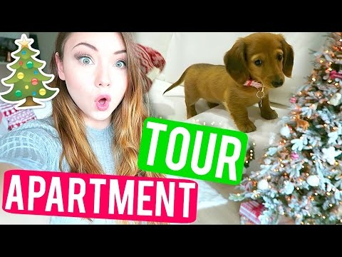 CHRISTMAS APARTMENT TOUR + PUPPY GOES CRAZY | VLOGMAS