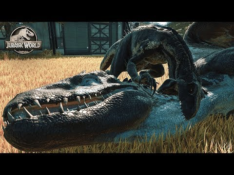 Jurassic World Evolution - INDORAPTOR vs INDOMINUS REX, INDO vs LARGEST DINOSAURS Fallen Kingdom DLC