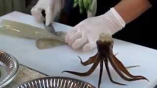 Разделка кальмара(Не для слабонервных. Ритуальное поедание кобры/ Не для слабонервных. Агентство Отдыха и Развлечений