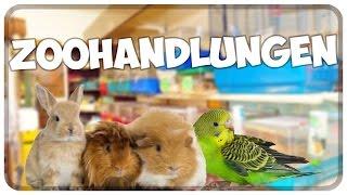 Tiere aus Zoohandlungen! Warum man keine Tiere aus Zooläden kaufen sollte! Informationsvideo!!