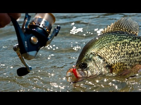 9 Killer Crappie Lakes In The Upper Midwest