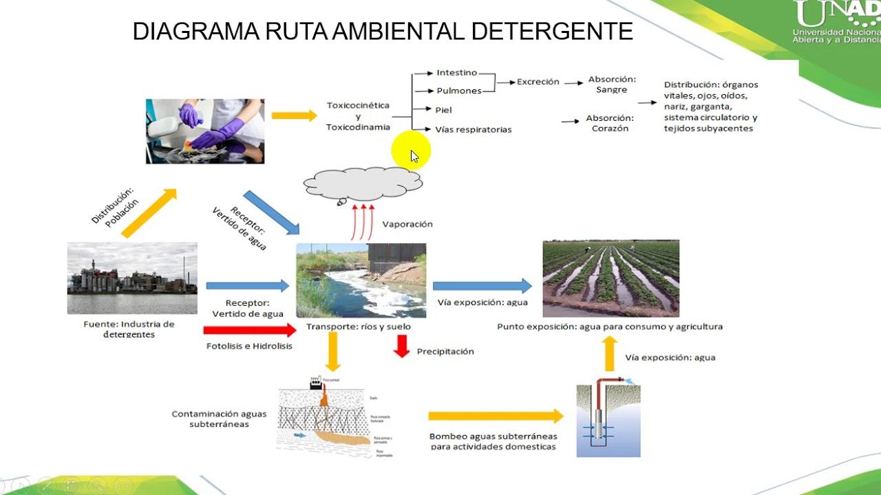 Unidad 2 Toxicidad de los contaminantes y efectos en el ambiente ...