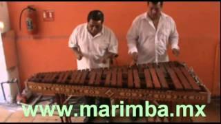 Marimba musical contrataciones Df grupos musicales para fiestas.mpg