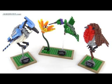 LEGO Ideas Birds review! set 21301