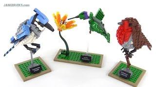 lEGO  Ideas (CUUSOO)  BIRDS - 21301 -  Лего  Птицы  1