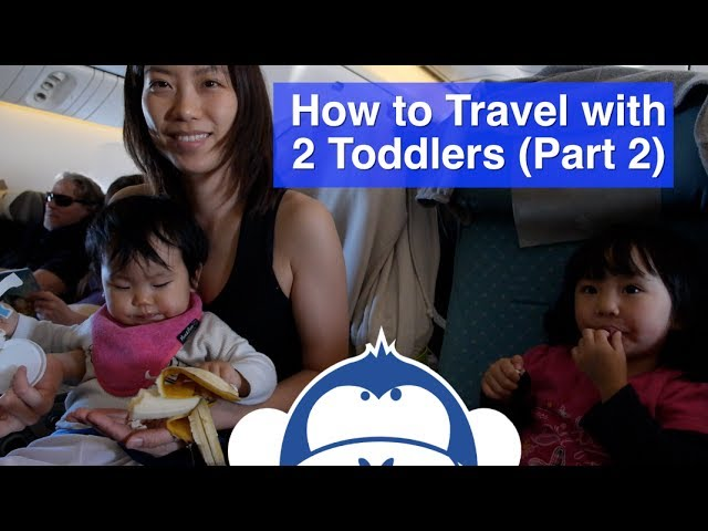How to Travel with 2 Toddlers - Toddler Travel Tips (Part 2 of 2)