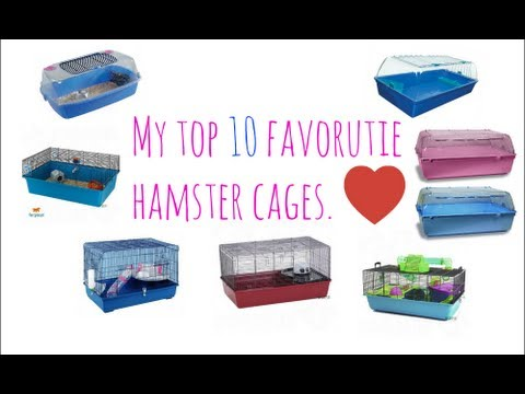 My Top 10 Favourite Hamster Cages.