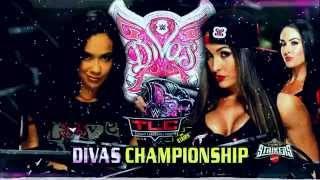 WWE: TLC 2014   Full Match Card!