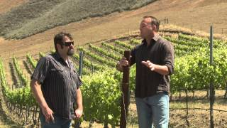 A7 2015: Bien Nacido Vineyards- Russell From (Herman Story Wines)