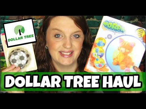 Dollar Tree Haul June 14th 2019