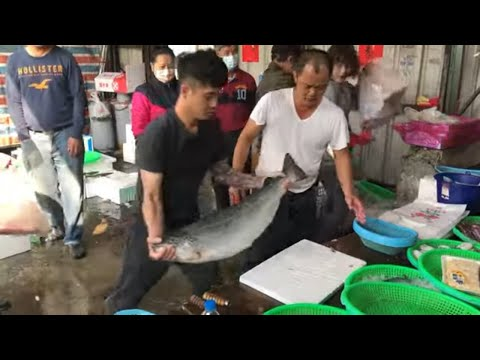 Taiwan Seafood Auction - Amazing Fish Cutting, Salmon, Grouper !