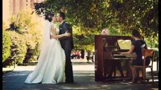 Свадьба Александра и Сергей