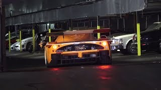 Exotic Car TOY RALLY Pagani Miami Lamborghini Miami Prestige Imports Getting Ready Behind the scenes
