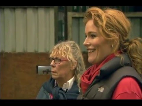 Pen-Llyn Lusitano's feature on Countryfile