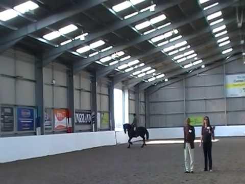 Marchje Fan Fjildsicht & Andrew Chadwick Friesian Horse Association Championship Winner 2011