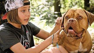 HANNI & NANNI - MEHR ALS BESTE FREUNDE   Trailer & Featurette [HD]