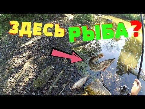 зимняя рыбалка на карася - 2018-05-24 00:40:18