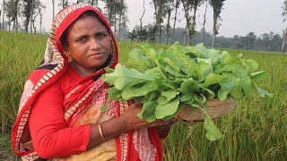 Healthy Radish Green Fry Recipe Farm Fresh Radish Leaves Curry Bengali Mula Shak Vaji Village Food