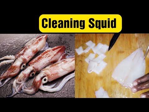 How to clean squid (kalamari / kadamba) @ Home