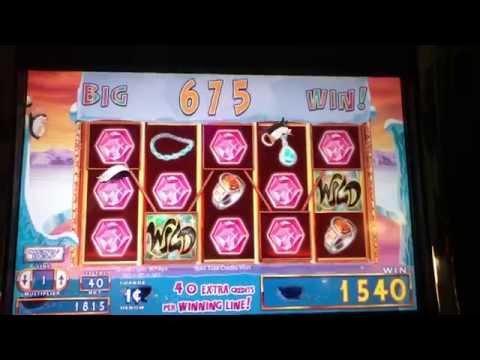 Video Penguin casino