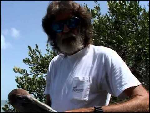 Waterways Episode 218 - No Take Zones AND Wild Bird Centers in the Florida Keys