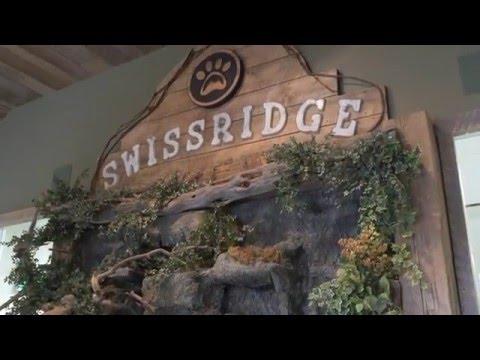 Swissridge Kennels Youtube