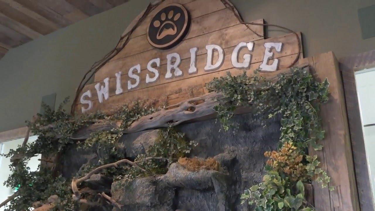 Swissridge Kennels