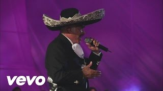 Video Vicente Fernández - El Rey (En Vivo) download MP3, 3GP, MP4, WEBM, AVI, FLV September 2017